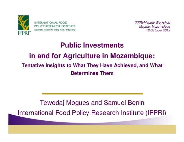 IFPRI-Maputo Workshop                                                Maputo, Mozambique                                   ...