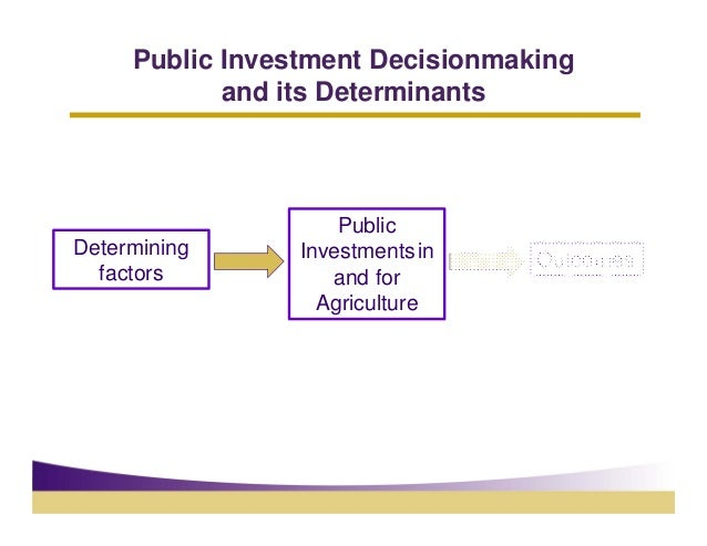Public Investment Decisionmaking            and its Determinants                     PublicDetermining      Investments in...