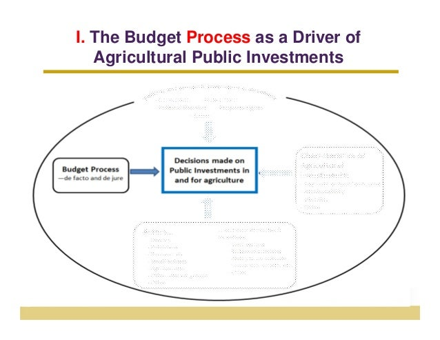 I. The Budget Process as a Driver of   Agricultural Public Investments