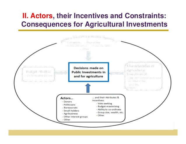 II. Actors, their Incentives and Constraints:Consequences for Agricultural Investments