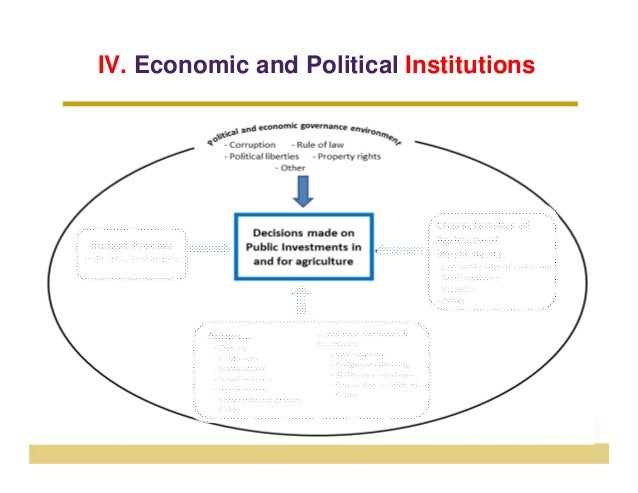 IV. Economic and Political Institutions