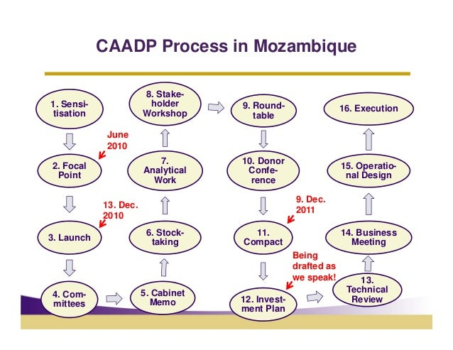 CAADP Process in Mozambique                       8. Stake-1. Sensi-               holder      9. Round-                  ...
