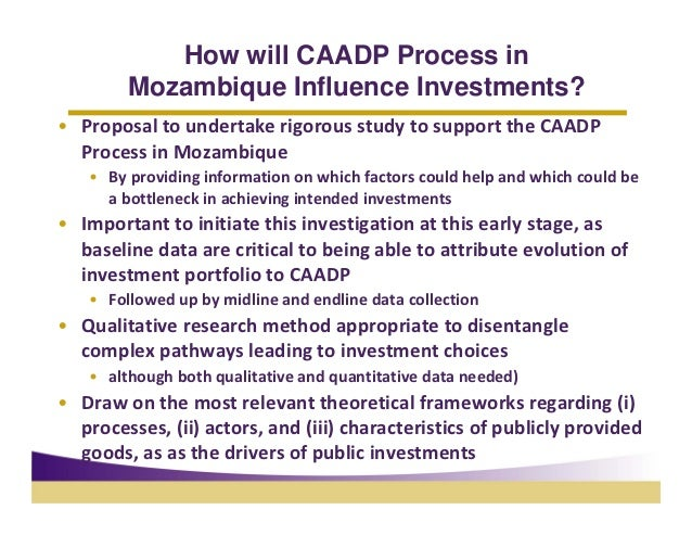 How will CAADP Process in        Mozambique Influence Investments?• ProposaltoundertakerigorousstudytosupporttheCA...