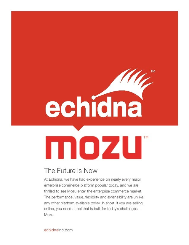 The Future is Now At Echidna, we have had experience on nearly every major enterprise commerce platform popular today, and...