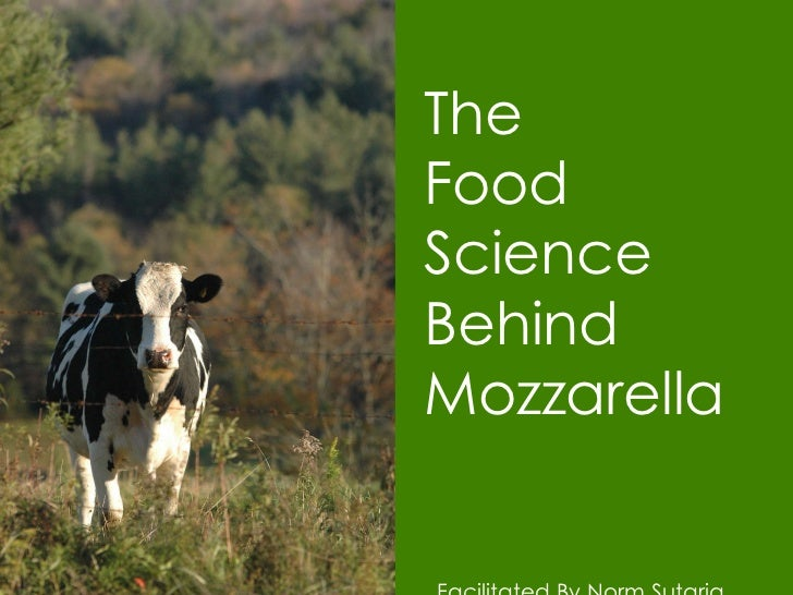 The Food Science Behind  Mozzarella Facilitated By Norm Sutaria