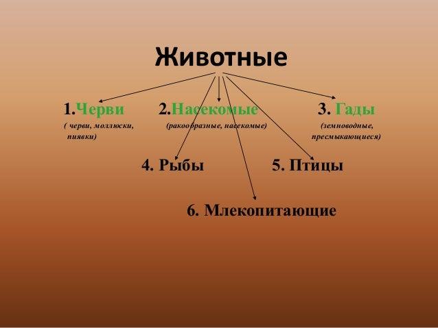 https://image.slidesharecdn.com/mpa8vhk2rkklbqng1nco-signature-26f1bb64fea612d24f549348fc5ed5390def51432e005b3a7a84c4015873a910-poli-150617090720-lva1-app6891/95/-12-638.jpg?cb=1434532085