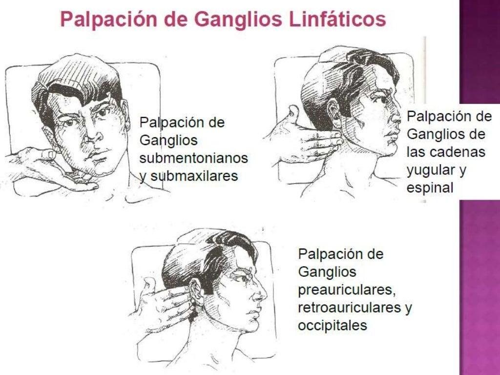 Valoracion cabeza, cara, cavidad oral, cuello y ganglios linfaticos