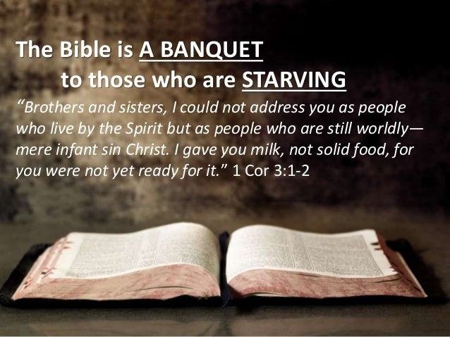 Image result for image solid food Bible