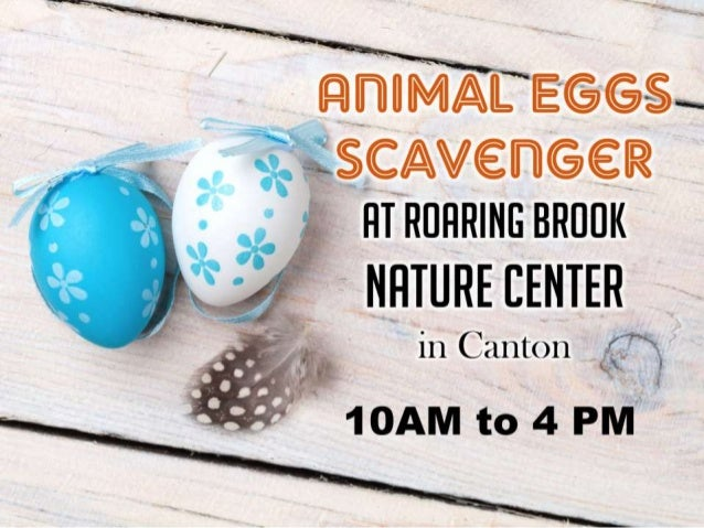 Roaring Brook Nature Center Canton Ct