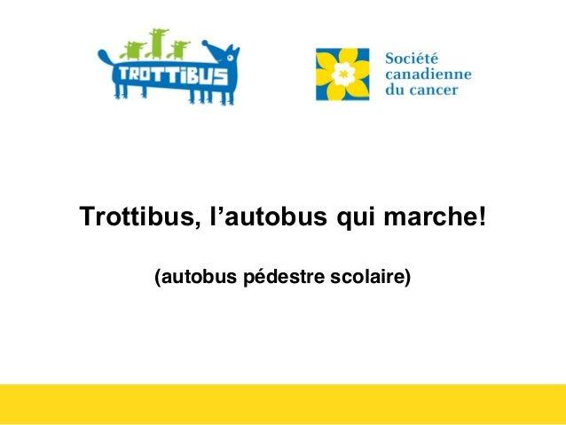 Trottibus, l'autobus qui marche!  (autobus pédestre scolaire)