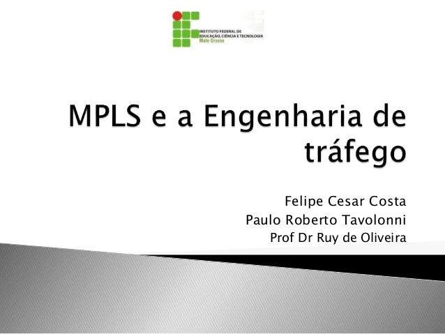 Felipe Cesar Costa Paulo Roberto Tavolonni Prof Dr Ruy de Oliveira