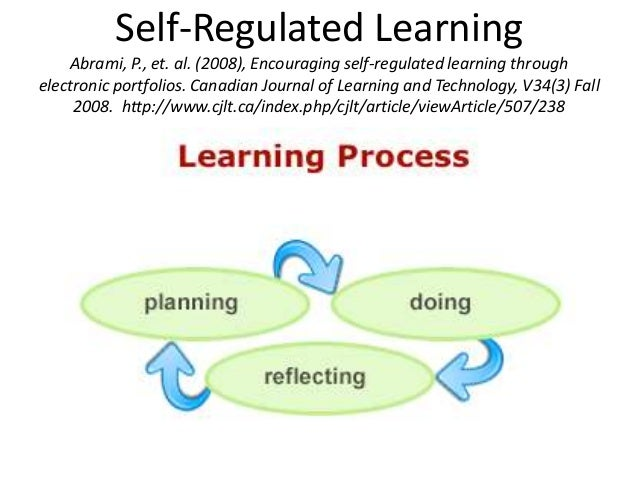 Learning/Reflection Cycle blog websiteSo What? Why? (double-loop learning) Now What? What?
