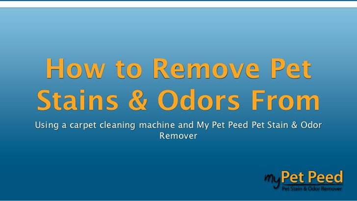 how to clean wet carpet odor