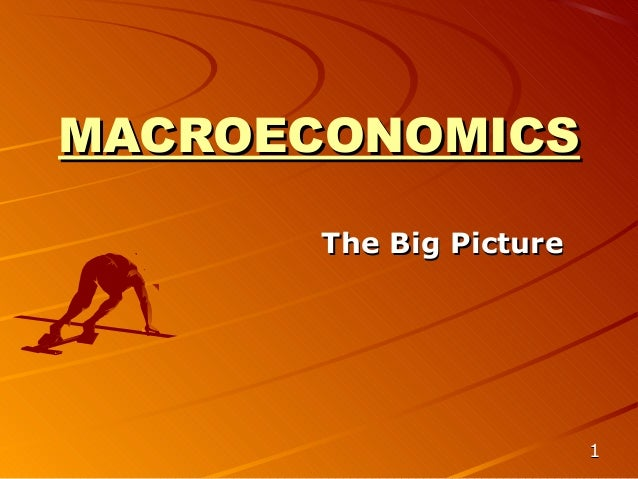 MACROECONOMICS       The Big Picture                         1