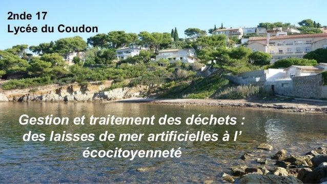 2nde 17 Lycée du Coudon Gestion et traitement des déchets : des laisses de mer artificielles à l' écocitoyenneté