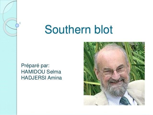 Southern blot Préparé par: HAMIDOU Selma HADJERSI Amina