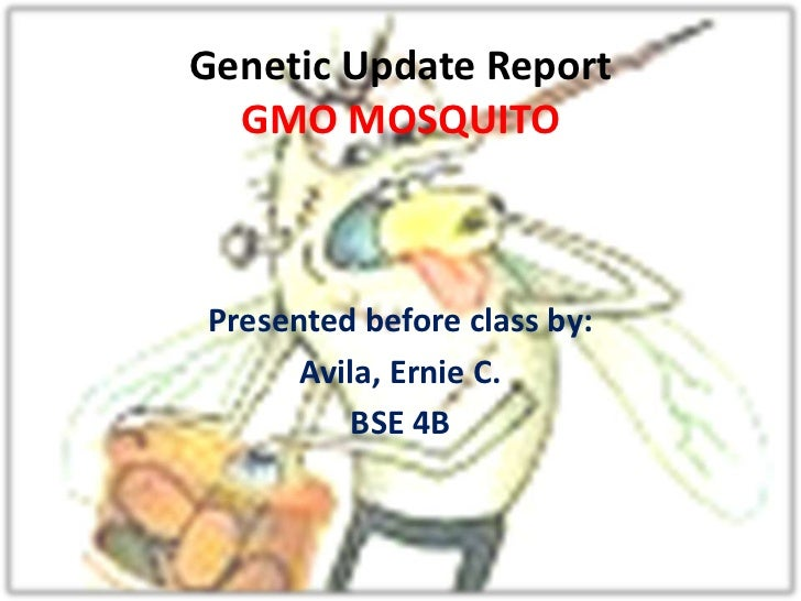 Genetic Update Report  GMO MOSQUITOPresented before class by:      Avila, Ernie C.          BSE 4B