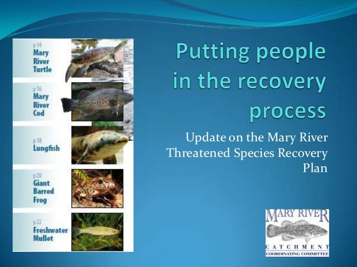 Update on the Mary RiverThreatened Species Recovery                       Plan