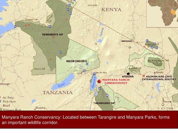 Manyara Ranch Conservancy: Located between Tarangire and Manyara Parks, forms <br />an important wildlife corridor. <br />