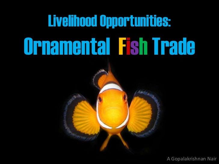 Livelihood Opportunities:Ornamental Fish Trade                          A Gopalakrishnan Nair