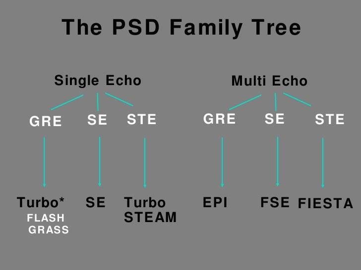 Single Echo Multi Echo GRE SE GRE SE STE STE Turbo* FLASH GRASS SE Turbo STEAM EPI FSE FIESTA The PSD Family Tree