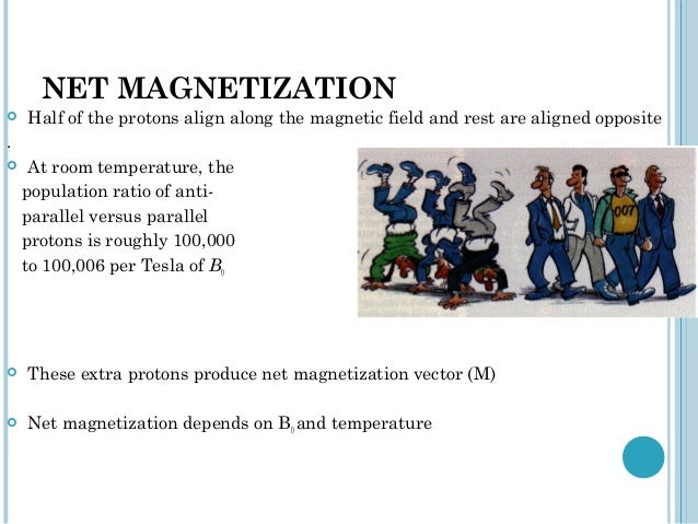 NET MAGNETIZATION   Half of the protons align along the magnetic field and rest are aligned opposite.    At room tempera...