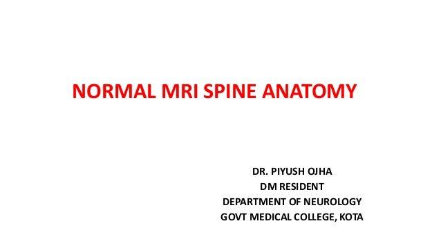 Mri Spine Anatomy