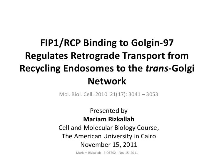 FIP1/RCP Binding to Golgin-97 Regulates Retrograde Transport fromRecycling Endosomes to the trans-Golgi               Netw...