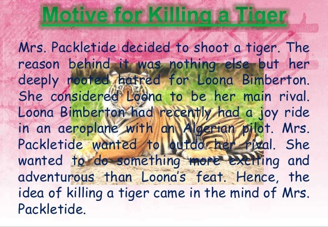"""loona bimberton in mrs packletide s tiger From the beginning the satirical tone employed increases our dislike of the petty mrs packletide whose motive for shooting a tiger was that her rival loona bimberton had recently flown in an """"aeroplane by an algerian aviator""""."""