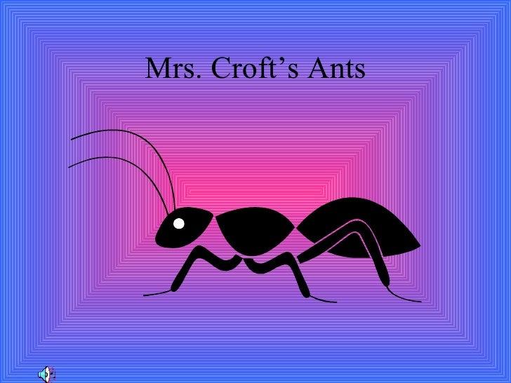 Mrs. Croft's Ants
