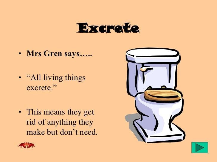 Mrs Gren