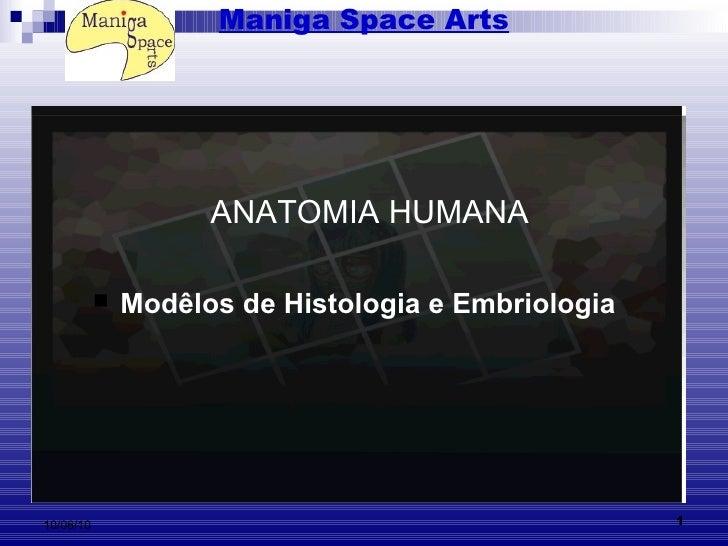 Maniga Space Arts <ul><li>Modêlos de Histologia e Embriologia   </li></ul>ANATOMIA HUMANA