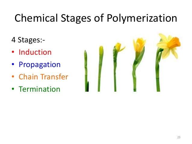 polymerization of composite resins dental chemistry essay Dental composite chemistry  mechanical properties and controlled polymerization  28(6):747-55 17-jayasooriya pr 32-toledano m composite.