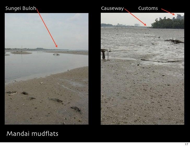 Sungei Buloh     Causeway   Customs     Mandai mudflats                                       17