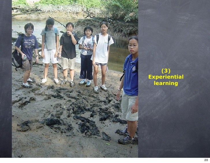 (3) Experiential   learning                    20