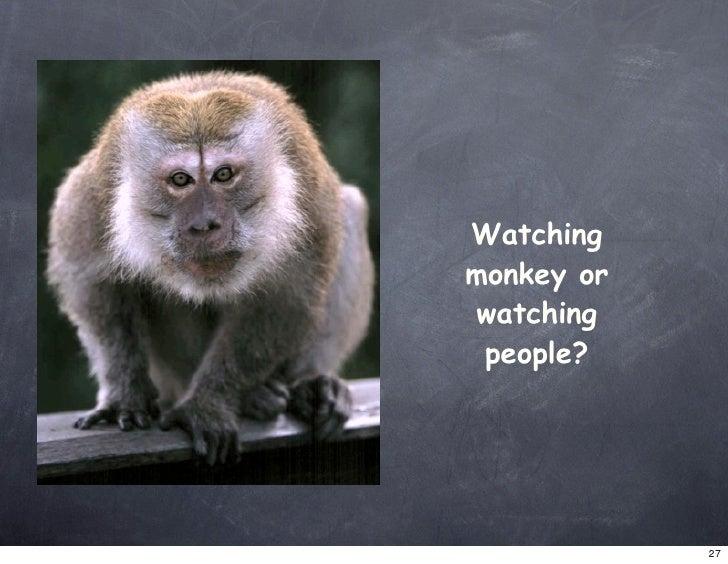 Watching monkey or watching  people?                 27