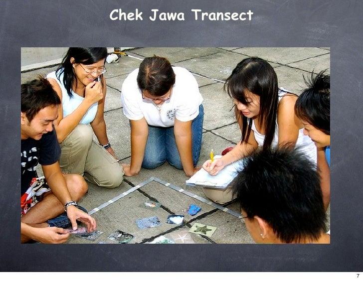 Chek Jawa Transect                          7