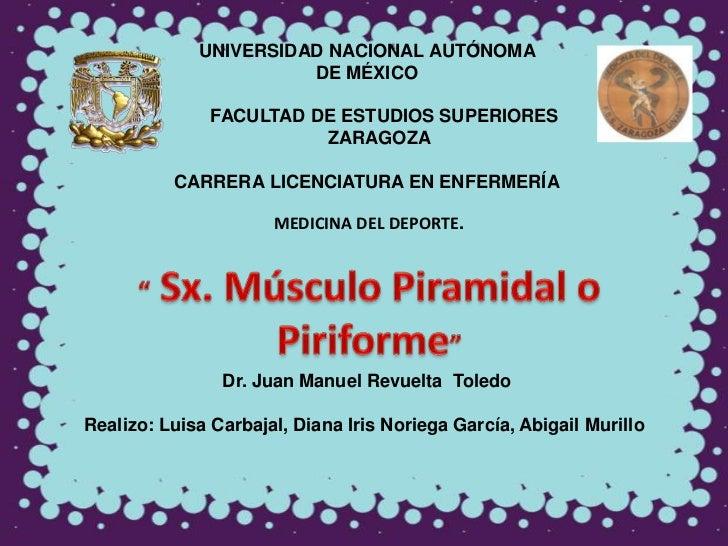 UNIVERSIDAD NACIONAL AUTÓNOMA                       DE MÉXICO               FACULTAD DE ESTUDIOS SUPERIORES               ...