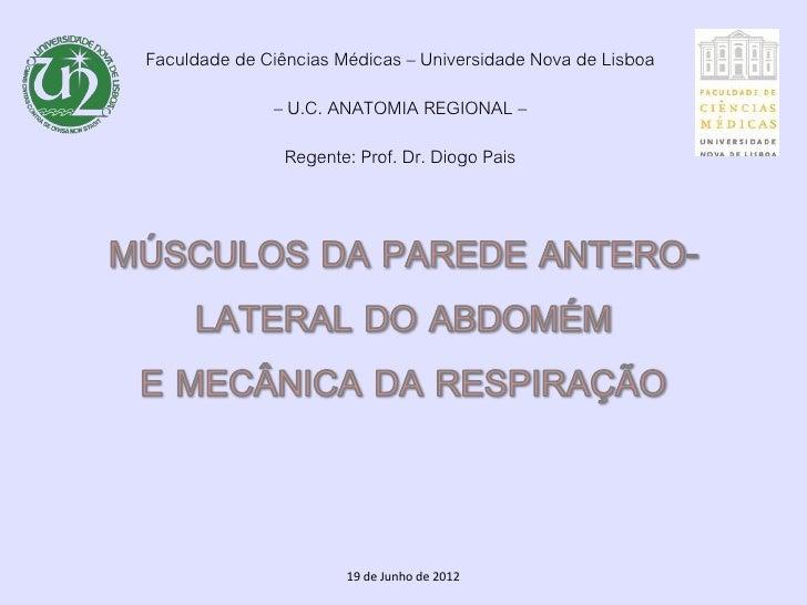 Faculdade de Ciências Médicas – Universidade Nova de Lisboa              – U.C. ANATOMIA REGIONAL –                Regente...