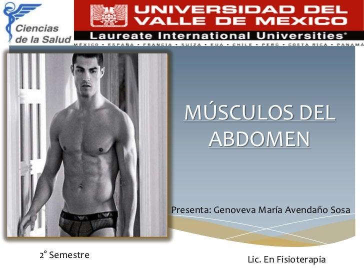 MÚSCULOS DEL                 ABDOMEN              Presenta: Genoveva María Avendaño Sosa2° Semestre                   Lic....