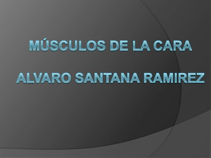 Músculos de la caraalvaro santana ramirez<br />