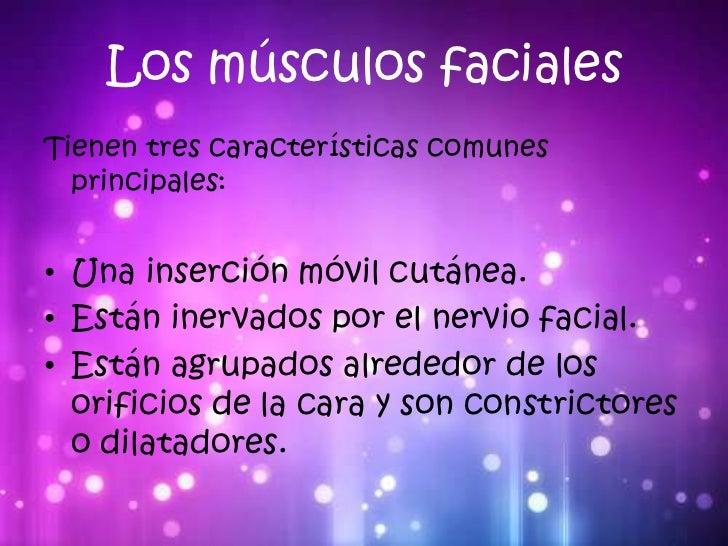 Músculos de la cara Slide 2