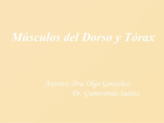 Músculos del Dorso y Tórax Autores: Dra. Olga González. Dr. Gumersindo Suárez