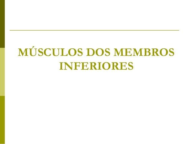 MÚSCULOS DOS MEMBROS     INFERIORES