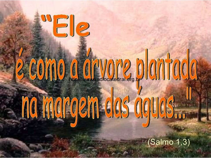 """é como a árvore plantada  na margem das águas...""""  """"Ele (Salmo 1,3) http://www.radiocatedral.org.br"""