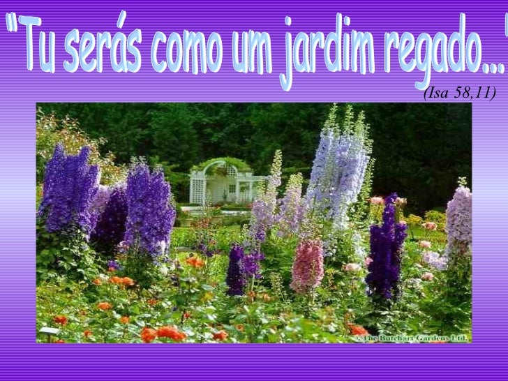 """""""Tu serás como um jardim regado...""""  (Isa 58,11)"""
