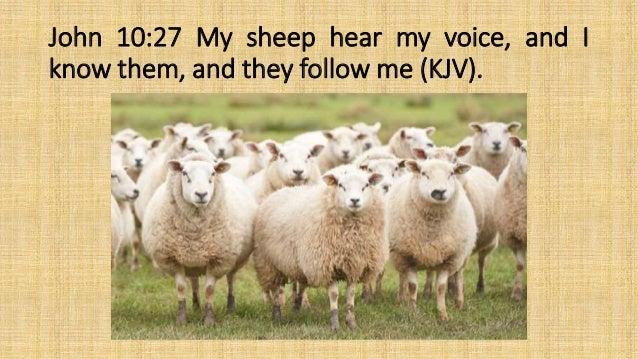 John 10:27
