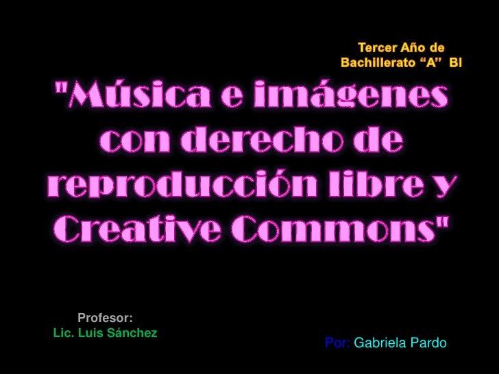 Profesor:Lic. Luis Sánchez                    Por: Gabriela Pardo