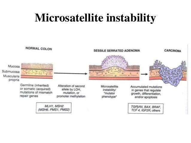 Microsatellite instability