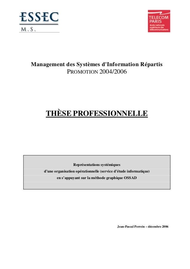 Management des Systèmes d'Information Répartis PROMOTION 2004/2006 THÈSE PROFESSIONNELLE Représentations systémiques d'une...